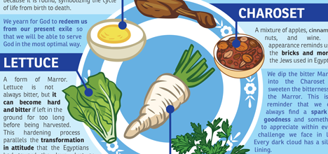 Passover Seder Plate infograhpic